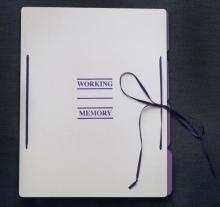 "Jim Reed: ""Working Memory"", o.O., 2012"
